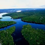lesa-Amazonki