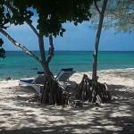 ostrov-mafiya