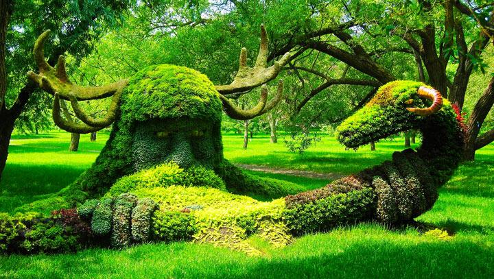 monrealskij-botanicheskij-sad.jpg