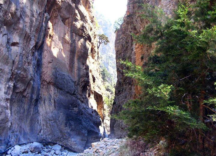 Ущелье Самарья – природное достояние острова Крит