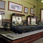 Исторический музей Смоленска