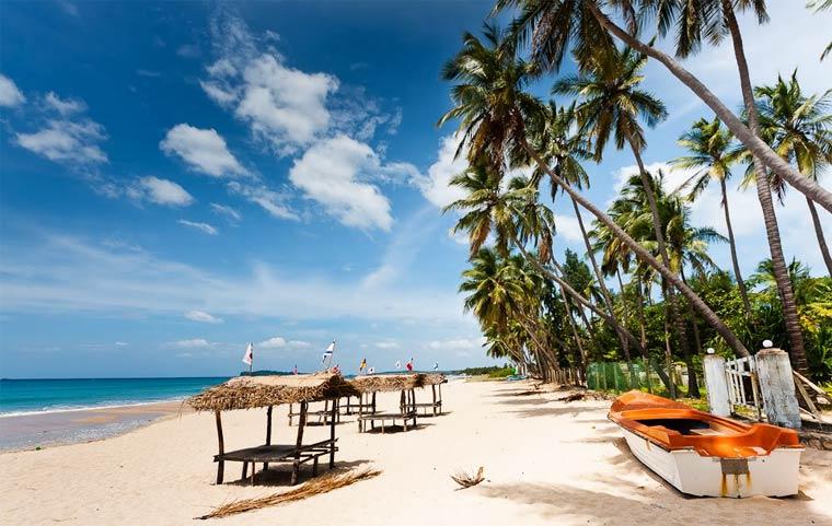 Отдых в Шри-Ланке в апреле
