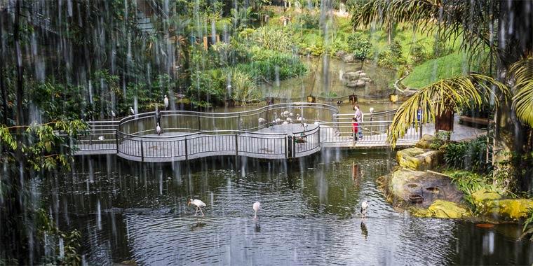 kuala-lumpurskij-park-ptic