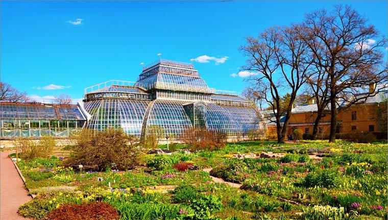 Ботанический сад на Аптекарском острове