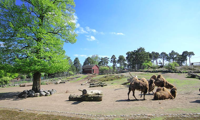 zoopark-helsinki