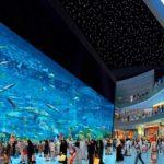 akvarium-v-dubae