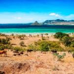Волшебный остров Мадагаскар