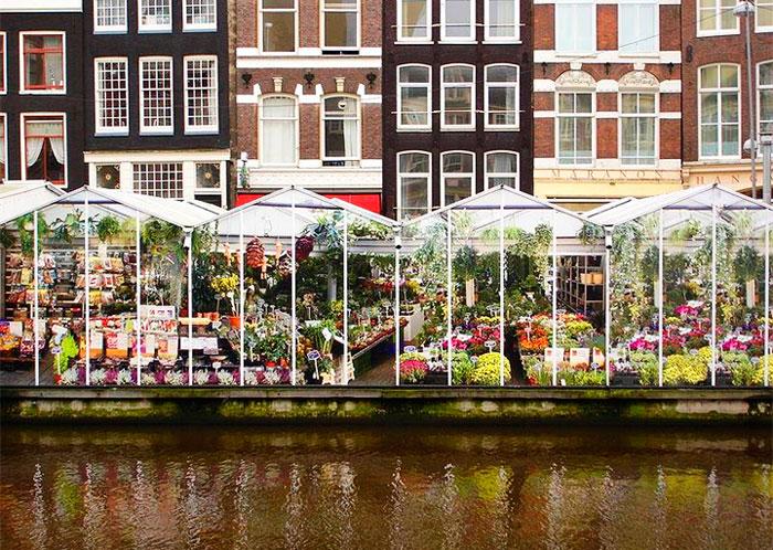cvetochnyj-rynok-v-amsterdame