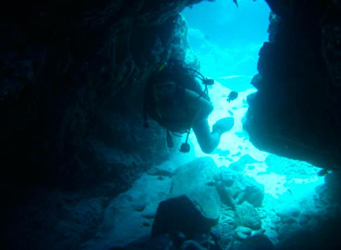 Дайвинг на острове Тенерифе — лучшие места для погружений