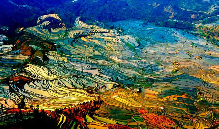 terrasy-yunnan