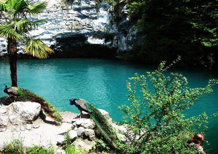 Экскурсия по Абхазии. Goluboe-ozero
