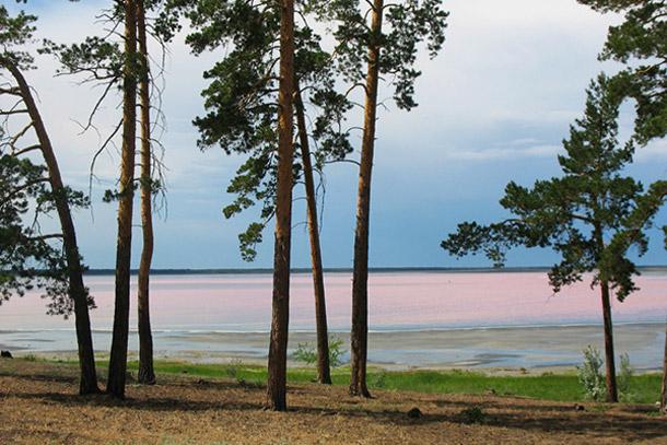 Малиновое озеро. Алтайский край