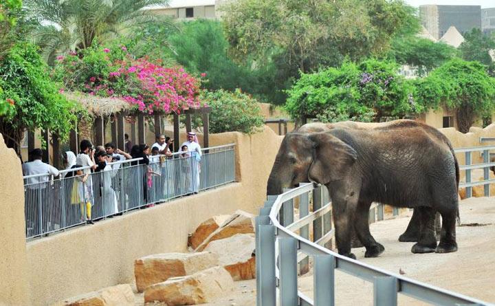 zoopark-dubai