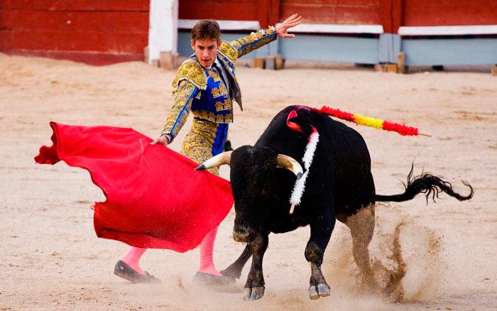 традиции и обычаи Испании: коррида