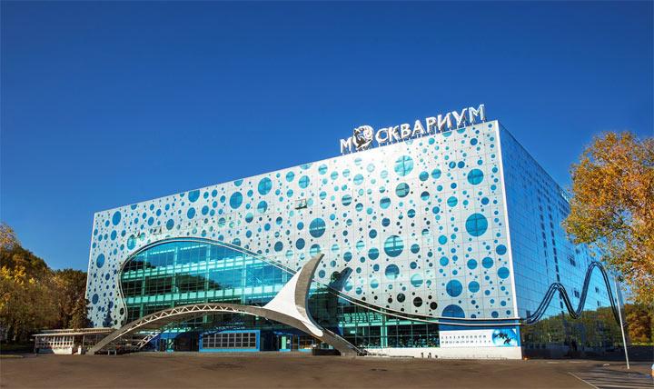 Куда можно сходить в Москве: океанариум